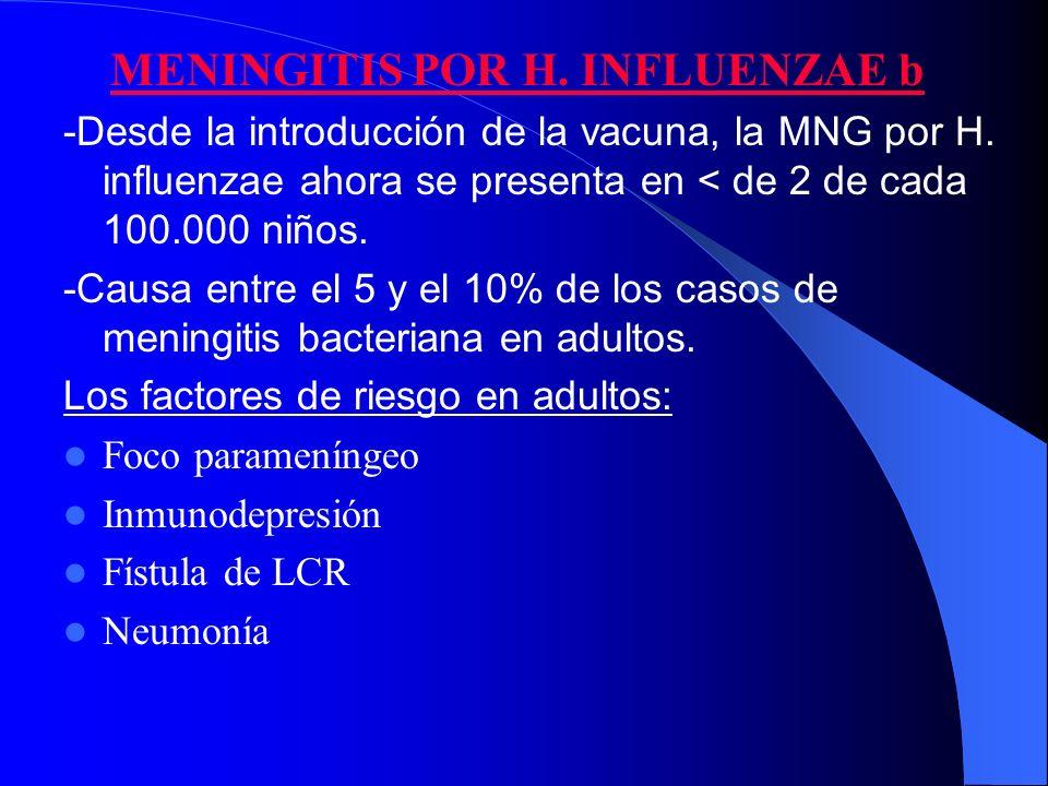 MENINGITIS POR H. INFLUENZAE b -Desde la introducción de la vacuna, la MNG por H. influenzae ahora se presenta en < de 2 de cada 100.000 niños. -Causa