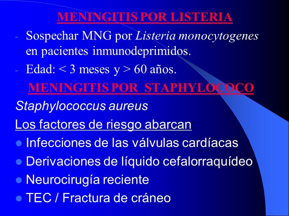 MENINGITIS POR LISTERIA - Sospechar MNG por Listeria monocytogenes en pacientes inmunodeprimidos. - Edad: 60 años. MENINGITIS POR STAPHYLOCOCO Staphyl