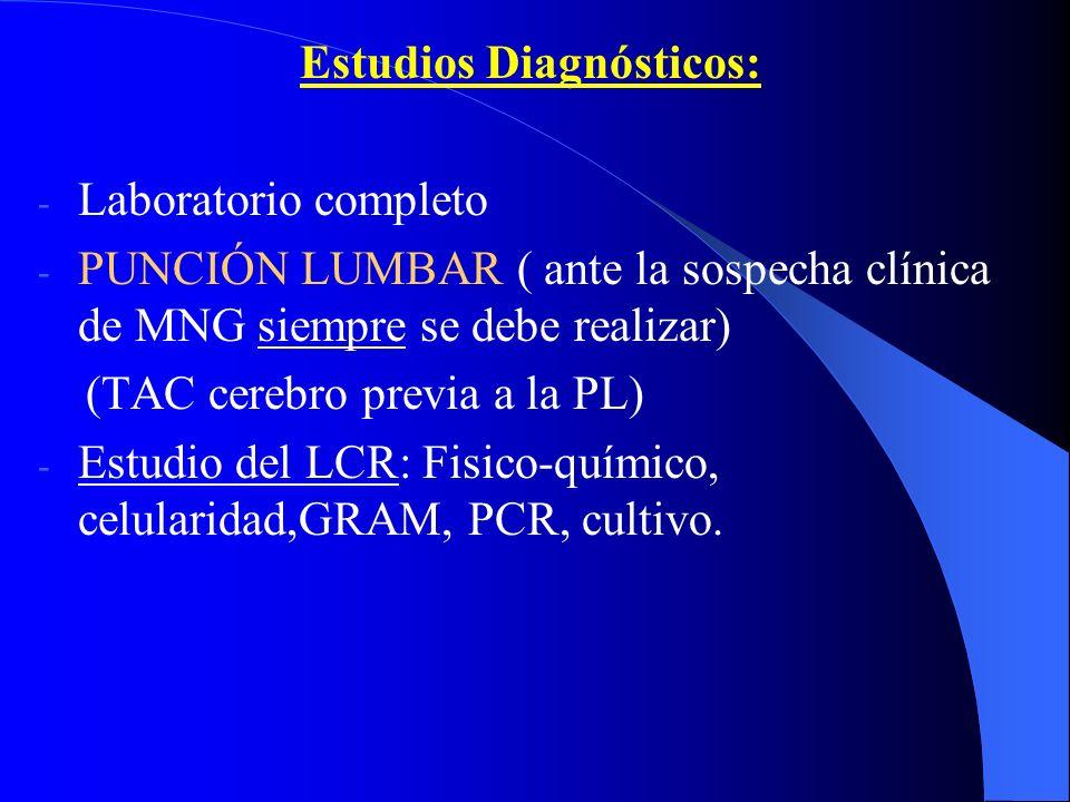 Estudios Diagnósticos: - Laboratorio completo - PUNCIÓN LUMBAR ( ante la sospecha clínica de MNG siempre se debe realizar) (TAC cerebro previa a la PL