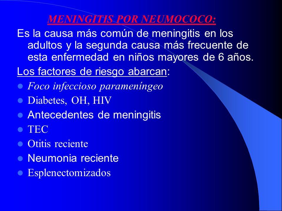 MENINGITIS POR NEUMOCOCO: Es la causa más común de meningitis en los adultos y la segunda causa más frecuente de esta enfermedad en niños mayores de 6