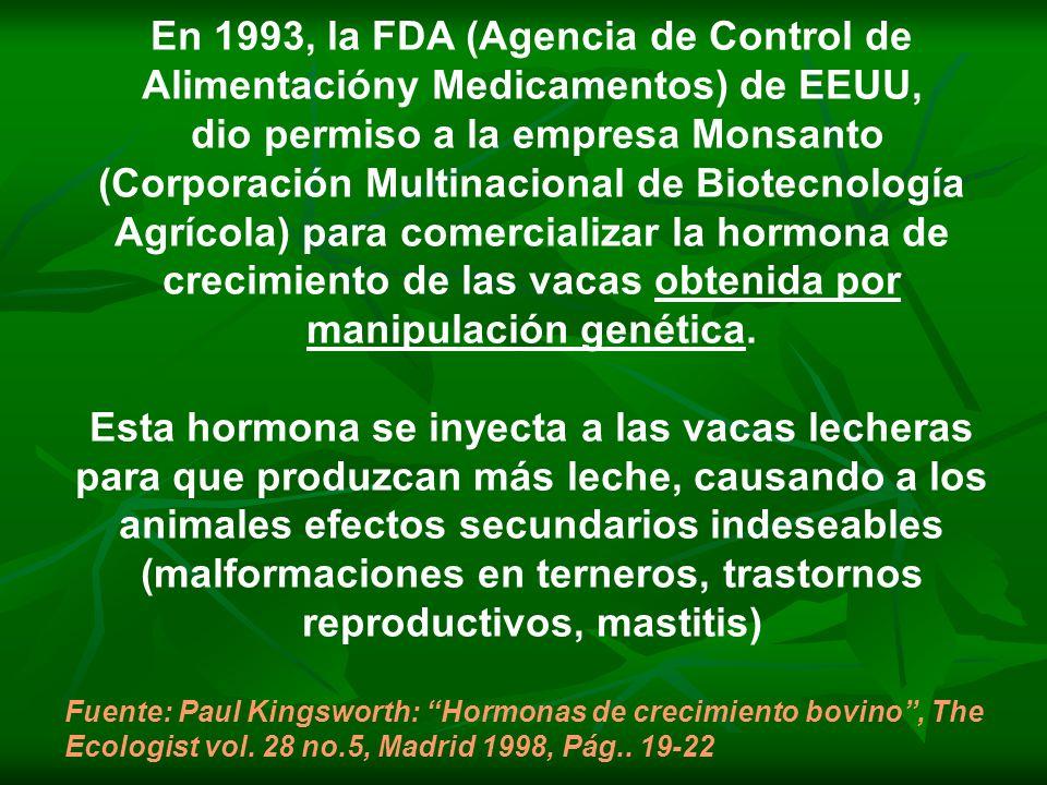En 1993, la FDA (Agencia de Control de Alimentacióny Medicamentos) de EEUU, dio permiso a la empresa Monsanto (Corporación Multinacional de Biotecnolo