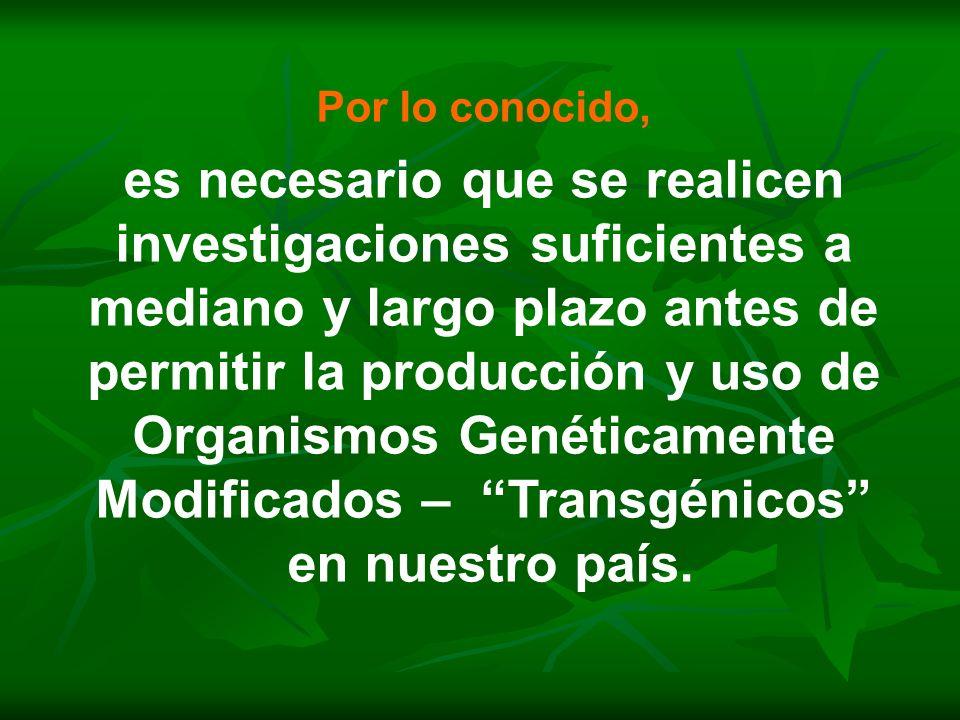 Por lo conocido, es necesario que se realicen investigaciones suficientes a mediano y largo plazo antes de permitir la producción y uso de Organismos