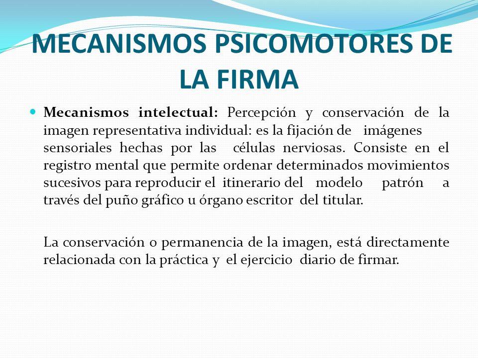 MECANISMOS PSICOMOTORES DE LA FIRMA Mecanismos intelectual: Percepción y conservación de la imagen representativa individual: es la fijación de imágen