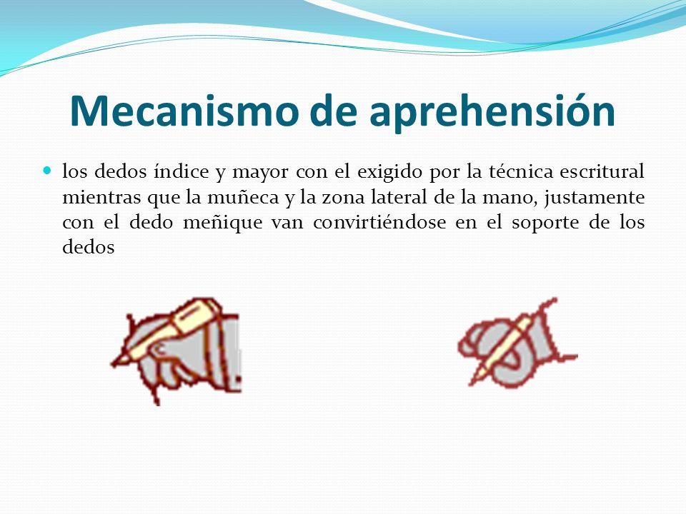 Mecanismo de aprehensión los dedos índice y mayor con el exigido por la técnica escritural mientras que la muñeca y la zona lateral de la mano, justam