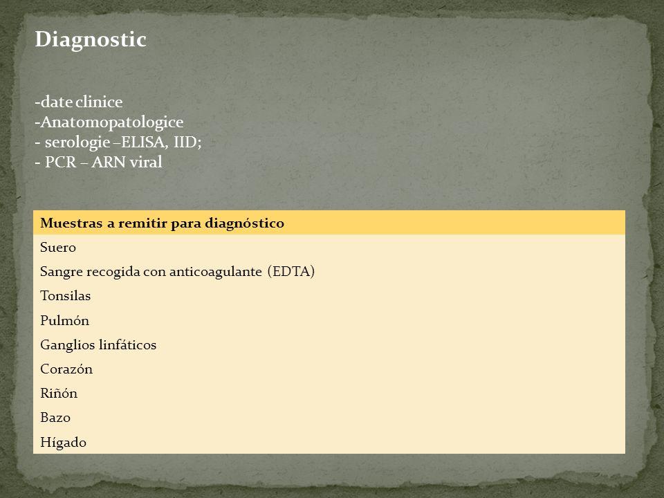 Diagnostic -date clinice -Anatomopatologice - serologie –ELISA, IID; - PCR – ARN viral Muestras a remitir para diagnóstico Suero Sangre recogida con a