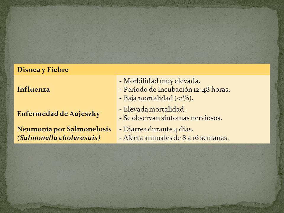 Disnea y Fiebre Influenza - Morbilidad muy elevada. - Periodo de incubación 12-48 horas. - Baja mortalidad (<1%). Enfermedad de Aujeszky - Elevada mor