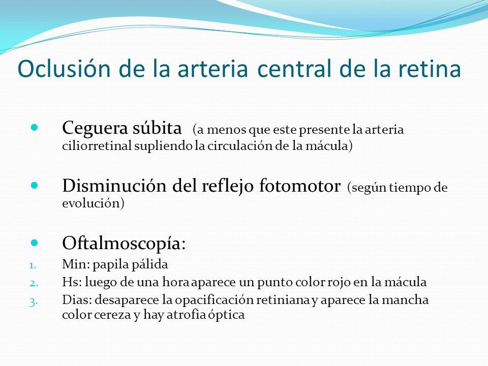 Oclusión de la arteria central de la retina Ceguera súbita (a menos que este presente la arteria ciliorretinal supliendo la circulación de la mácula)