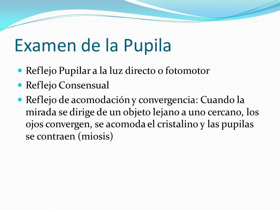 Examen de la Pupila Reflejo Pupilar a la luz directo o fotomotor Reflejo Consensual Reflejo de acomodación y convergencia: Cuando la mirada se dirige