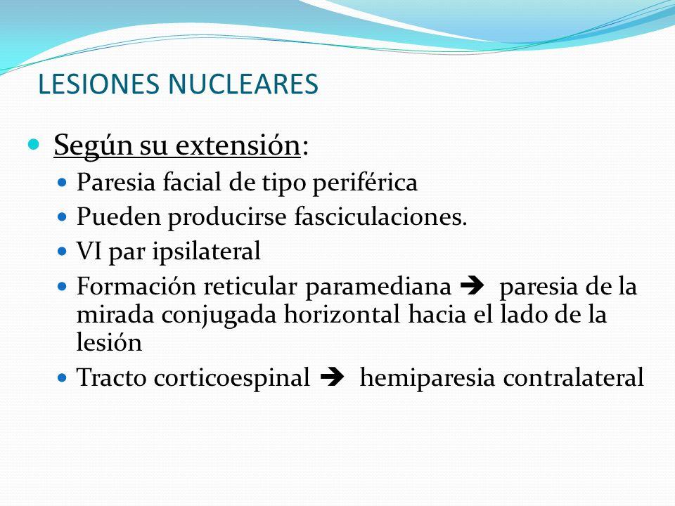 LESIONES NUCLEARES Según su extensión: Paresia facial de tipo periférica Pueden producirse fasciculaciones. VI par ipsilateral Formación reticular par