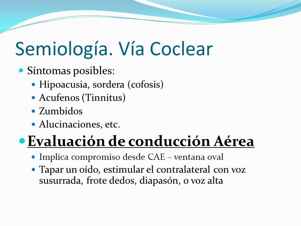 Semiología. Vía Coclear Síntomas posibles: Hipoacusia, sordera (cofosis) Acufenos (Tinnitus) Zumbidos Alucinaciones, etc. Evaluación de conducción Aér