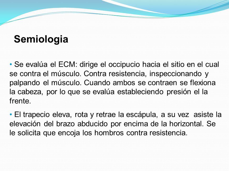 Semiologia Se evalúa el ECM: dirige el occipucio hacia el sitio en el cual se contra el músculo. Contra resistencia, inspeccionando y palpando el músc