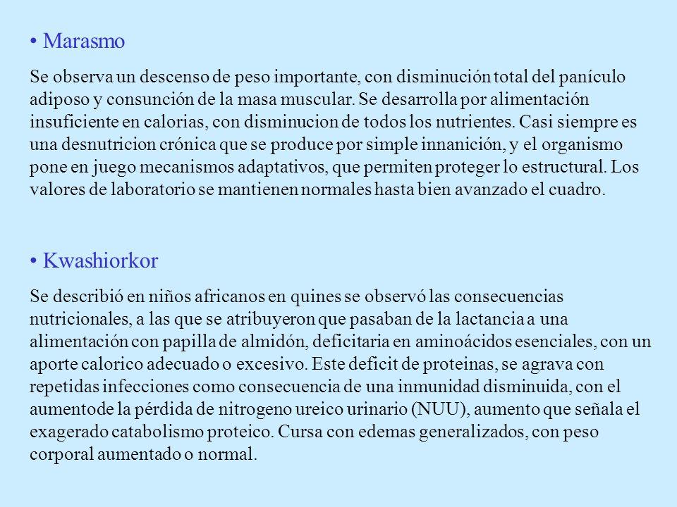 Historia natural de la Desnutrición Balance energético y de nitrógeno negativo Inanición simple Inanición con injuria Adelgazamiento Hipoalbuminemia Kwashiorkor Marasmo M.