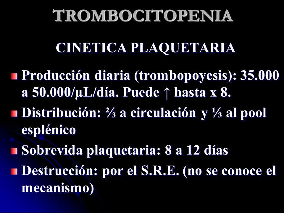 TROMBOCITOPENIA CINETICA PLAQUETARIA Producción diaria (trombopoyesis): 35.000 a 50.000/µL/día. Puede hasta x 8. Distribución: a circulación y al pool
