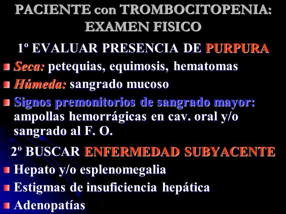 PACIENTE con TROMBOCITOPENIA: EXAMEN FISICO 1º EVALUAR PRESENCIA DE PURPURA Seca: petequias, equimosis, hematomas Húmeda: sangrado mucoso Signos premo