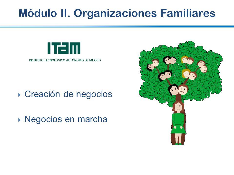 Módulo II. Organizaciones Familiares Creación de negocios Negocios en marcha