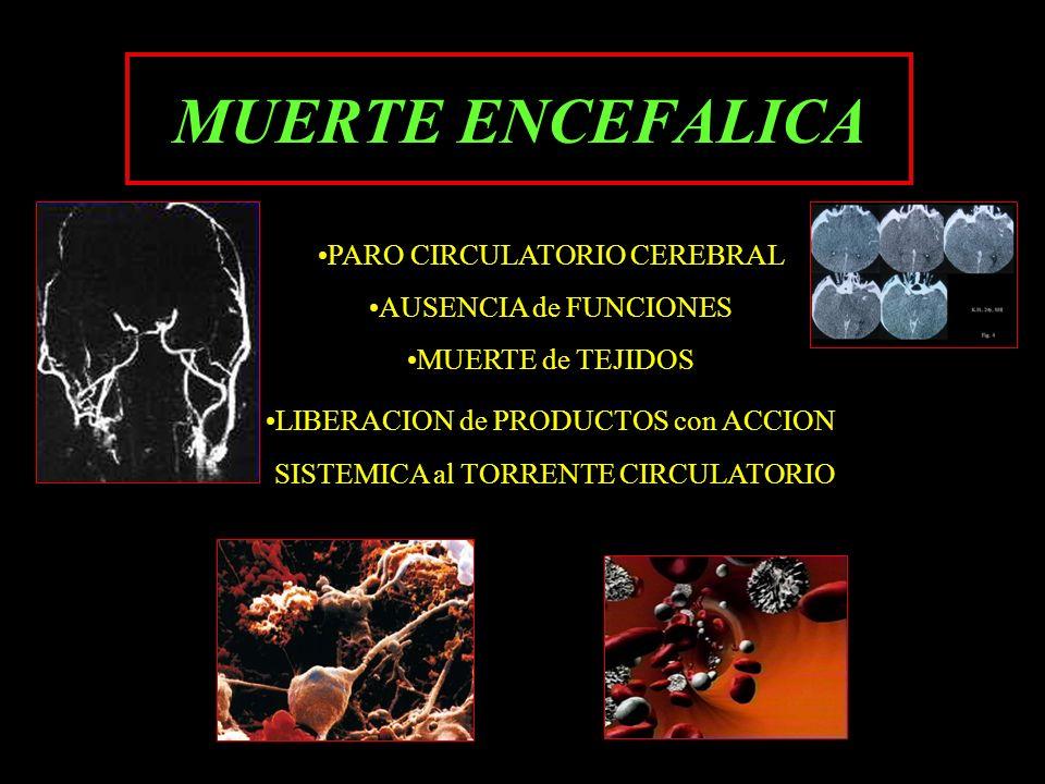 MUERTE ENCEFALICA PARO CIRCULATORIO CEREBRAL AUSENCIA de FUNCIONES MUERTE de TEJIDOS LIBERACION de PRODUCTOS con ACCION SISTEMICA al TORRENTE CIRCULAT