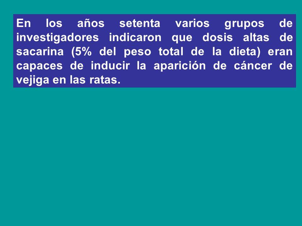 En los años setenta varios grupos de investigadores indicaron que dosis altas de sacarina (5% del peso total de la dieta) eran capaces de inducir la a
