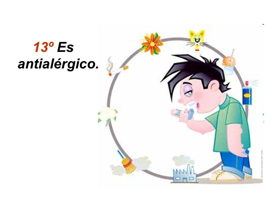 13º Es antialérgico.