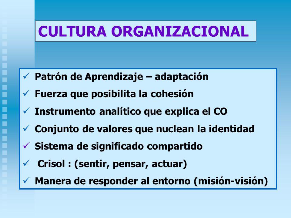 Patrón de Aprendizaje – adaptación Fuerza que posibilita la cohesión Instrumento analítico que explica el CO Conjunto de valores que nuclean la identi