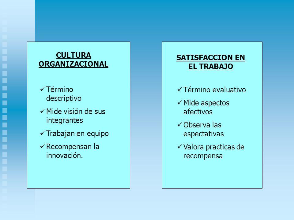 CULTURA ORGANIZACIONAL SATISFACCION EN EL TRABAJO Término descriptivo Mide visión de sus integrantes Trabajan en equipo Recompensan la innovación. Tér