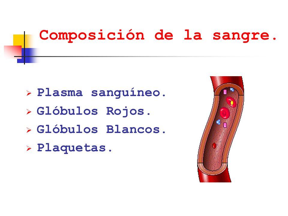 Composición de la sangre. Plasma sanguíneo. Glóbulos Rojos. Glóbulos Blancos. Plaquetas.