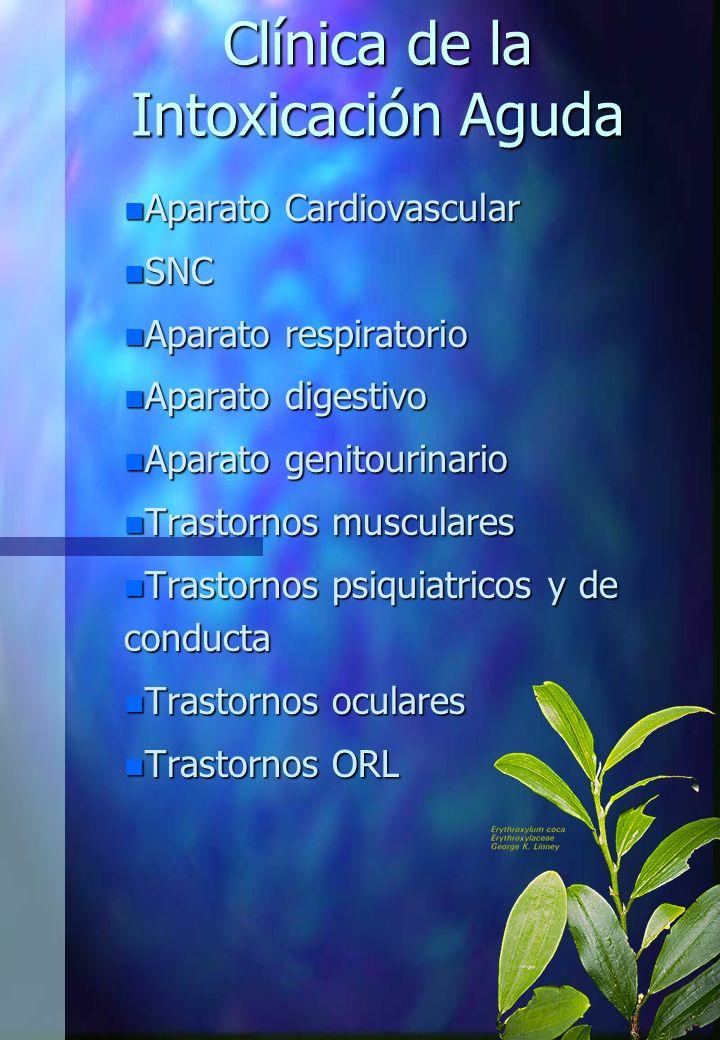Clínica de la Intoxicación Aguda n Aparato Cardiovascular n SNC n Aparato respiratorio n Aparato digestivo n Aparato genitourinario n Trastornos muscu