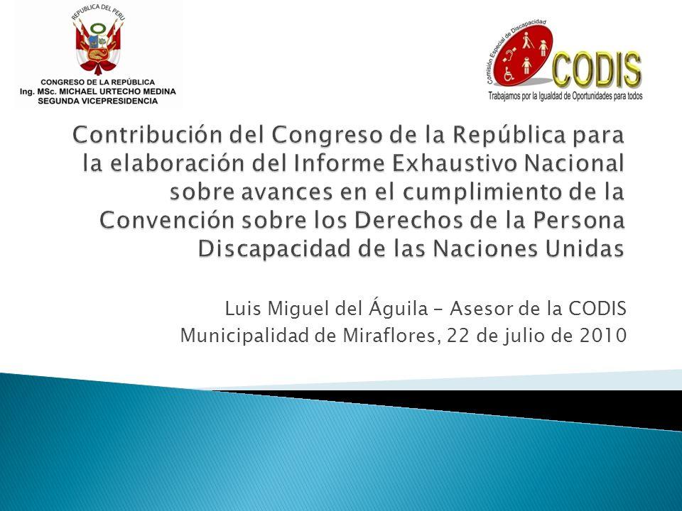 Luis Miguel del Águila - Asesor de la CODIS Municipalidad de Miraflores, 22 de julio de 2010