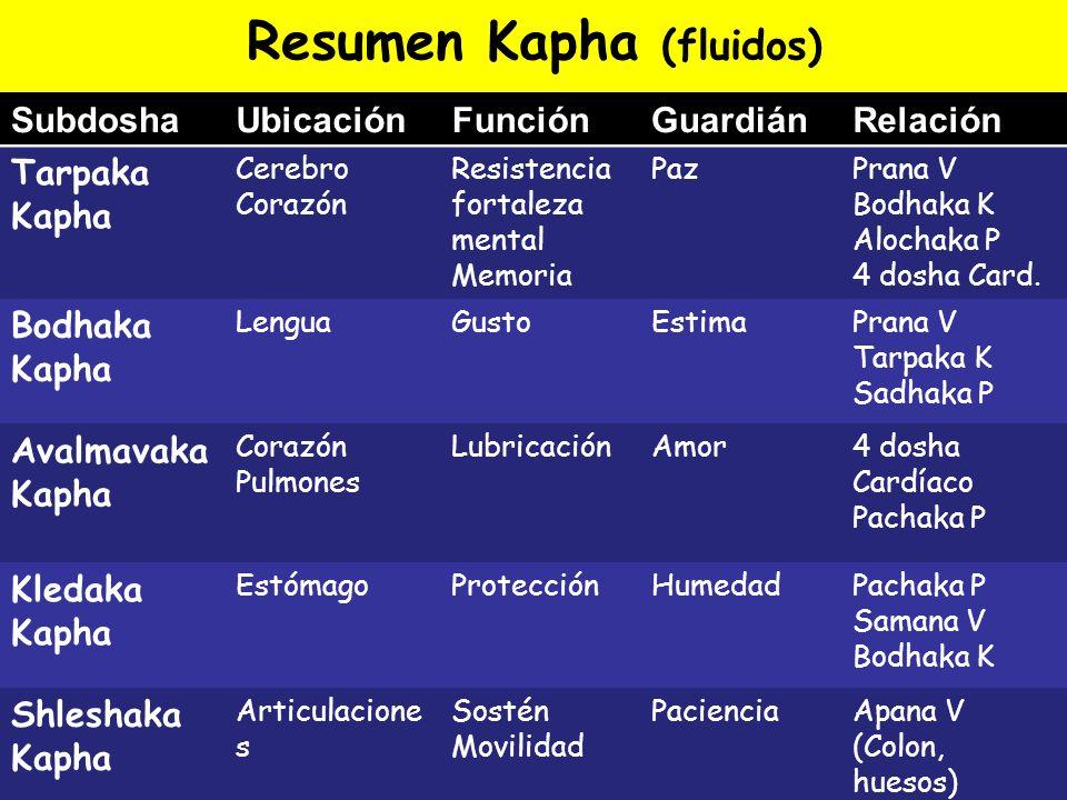 Resumen Kapha (fluidos) SubdoshaUbicaciónFunciónGuardiánRelación Tarpaka Kapha Cerebro Corazón Resistencia fortaleza mental Memoria PazPrana V Bodhaka
