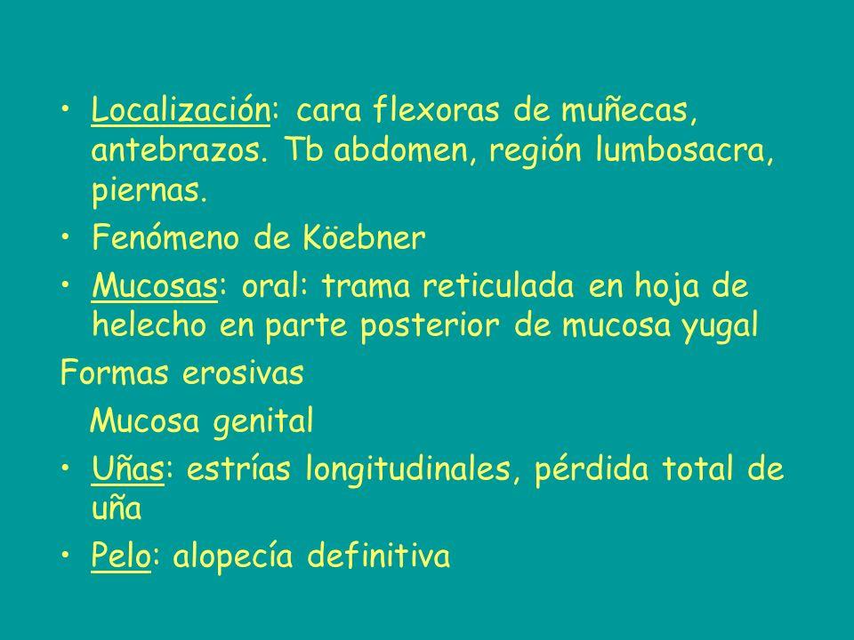 Localización: cara flexoras de muñecas, antebrazos. Tb abdomen, región lumbosacra, piernas. Fenómeno de Köebner Mucosas: oral: trama reticulada en hoj