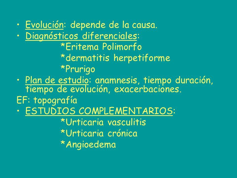 Evolución: depende de la causa. Diagnósticos diferenciales: *Eritema Polimorfo *dermatitis herpetiforme *Prurigo Plan de estudio: anamnesis, tiempo du