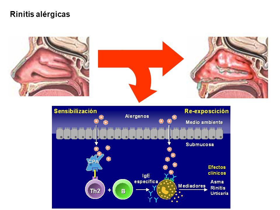 Formación mucosa tumefacta anormal e irregular