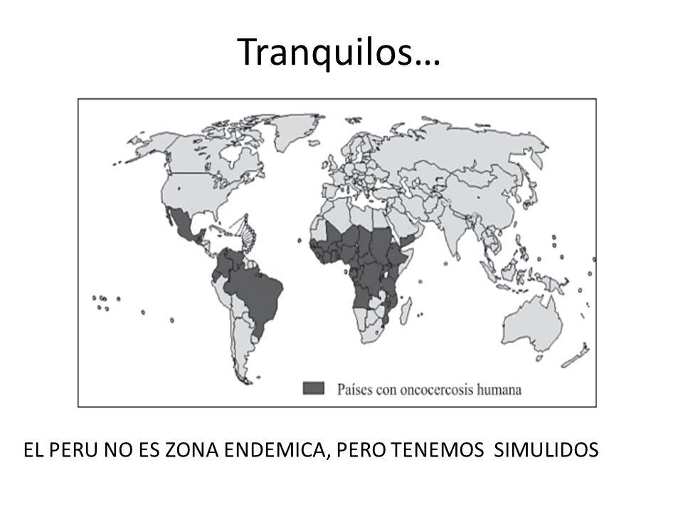 Tranquilos… EL PERU NO ES ZONA ENDEMICA, PERO TENEMOS SIMULIDOS