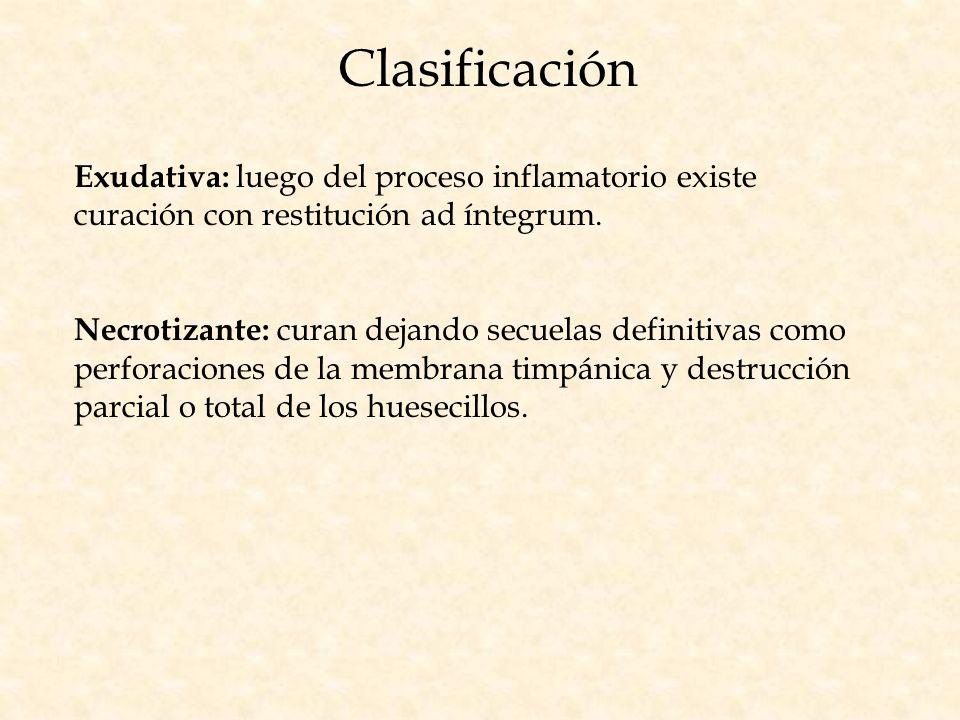 Clasificación Exudativa: luego del proceso inflamatorio existe curación con restitución ad íntegrum. Necrotizante: curan dejando secuelas definitivas