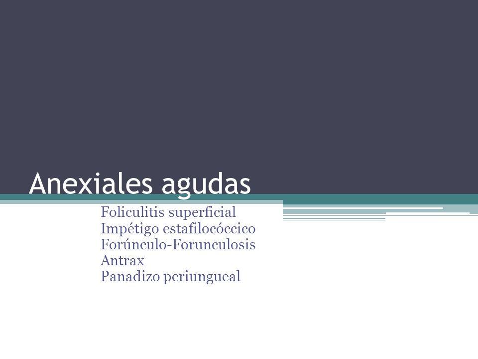 Anexiales agudas Foliculitis superficial Impétigo estafilocóccico Forúnculo-Forunculosis Antrax Panadizo periungueal