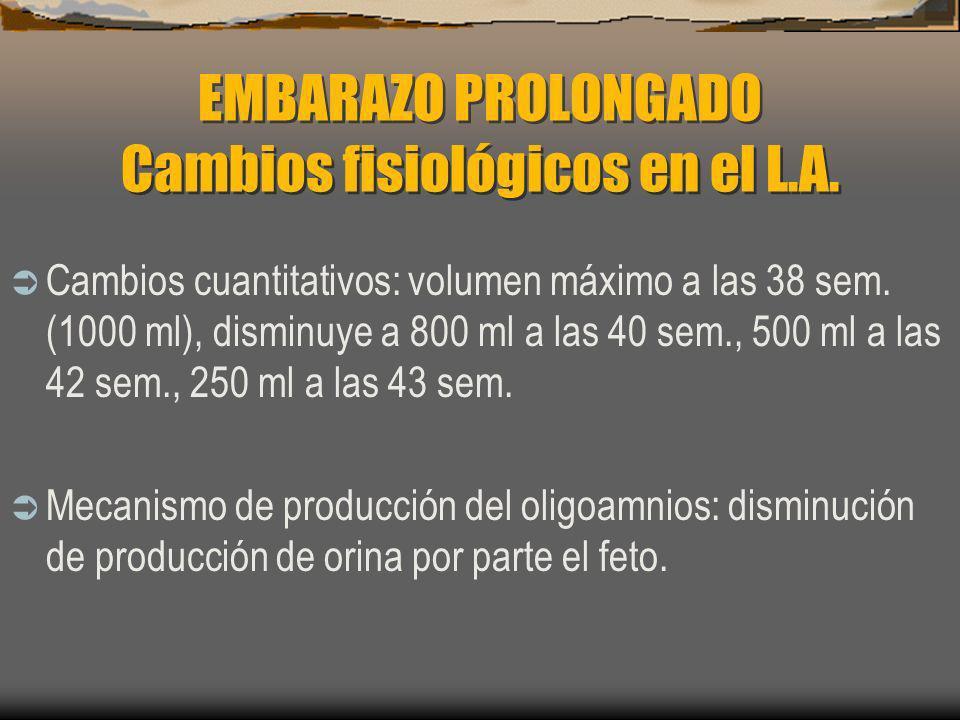 EMBARAZO PROLONGADO Cambios fisiológicos en el L.A. Cambios cuantitativos: volumen máximo a las 38 sem. (1000 ml), disminuye a 800 ml a las 40 sem., 5