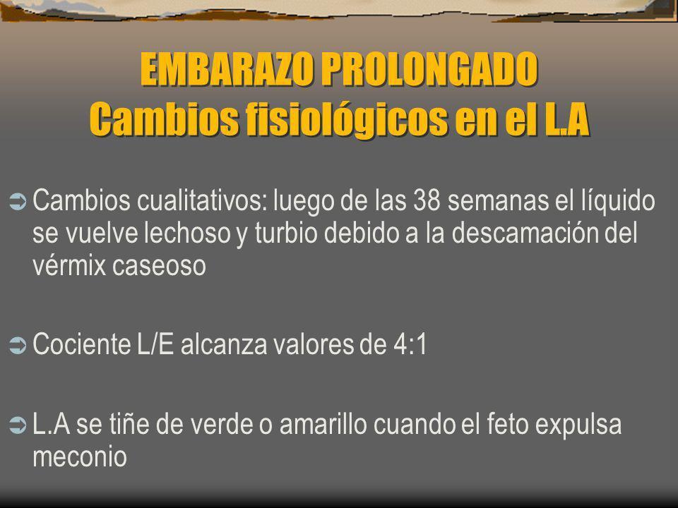 EMBARAZO PROLONGADO Cambios fisiológicos en el L.A Cambios cualitativos: luego de las 38 semanas el líquido se vuelve lechoso y turbio debido a la des