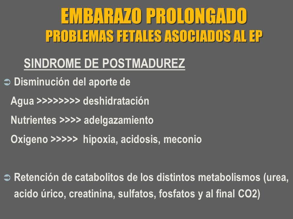 EMBARAZO PROLONGADO PROBLEMAS FETALES ASOCIADOS AL EP SINDROME DE POSTMADUREZ Disminución del aporte de Agua >>>>>>>> deshidratación Nutrientes >>>> a