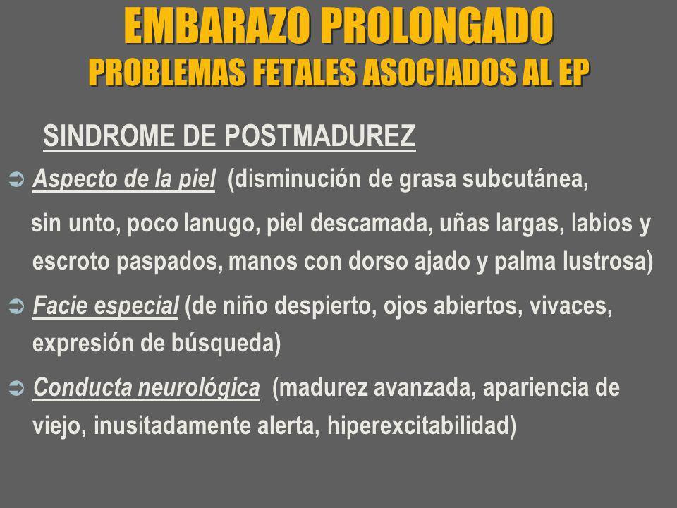 EMBARAZO PROLONGADO PROBLEMAS FETALES ASOCIADOS AL EP SINDROME DE POSTMADUREZ Aspecto de la piel (disminución de grasa subcutánea, sin unto, poco lanu