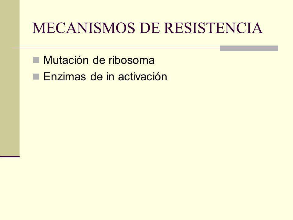 ESPECTRO UTIL Bacilos aerobios gramnegativos Kanamicina y Estreptomicina espectro limitado, no cubren Serratia ni P.