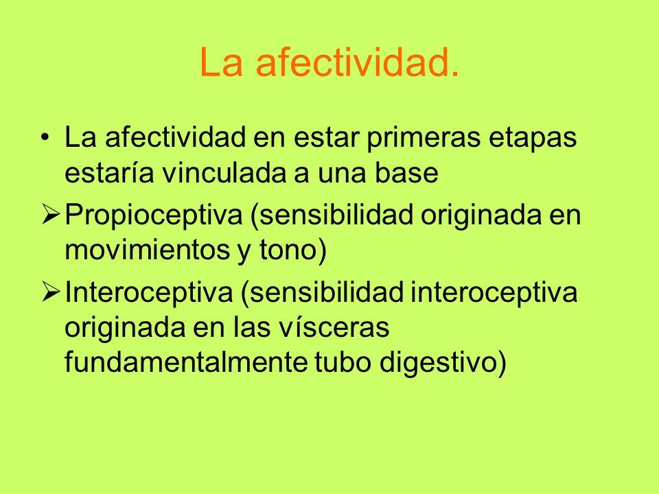 La afectividad. La afectividad en estar primeras etapas estaría vinculada a una base Propioceptiva (sensibilidad originada en movimientos y tono) Inte