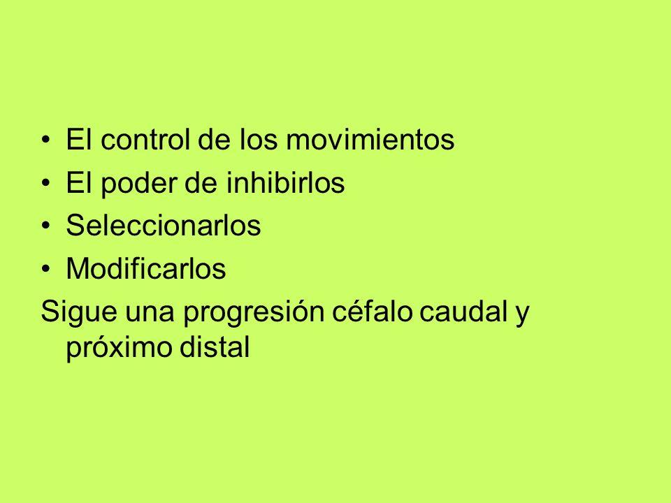El control de los movimientos El poder de inhibirlos Seleccionarlos Modificarlos Sigue una progresión céfalo caudal y próximo distal