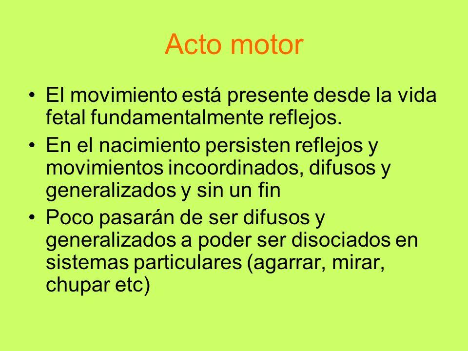 Acto motor El movimiento está presente desde la vida fetal fundamentalmente reflejos. En el nacimiento persisten reflejos y movimientos incoordinados,