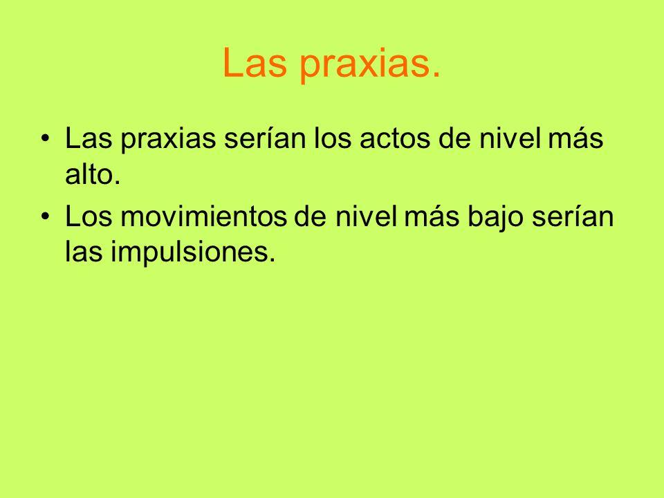 Las praxias. Las praxias serían los actos de nivel más alto. Los movimientos de nivel más bajo serían las impulsiones.