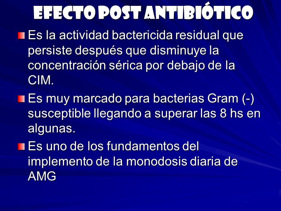 Efecto post antibiótico Es la actividad bactericida residual que persiste después que disminuye la concentración sérica por debajo de la CIM. Es muy m