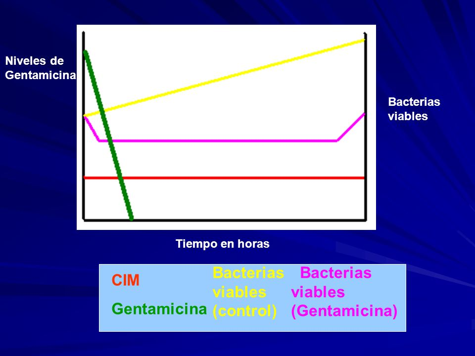 Niveles de Gentamicina Bacterias viables Tiempo en horas CIM Gentamicina Bacterias viables (control) Bacterias viables (Gentamicina)