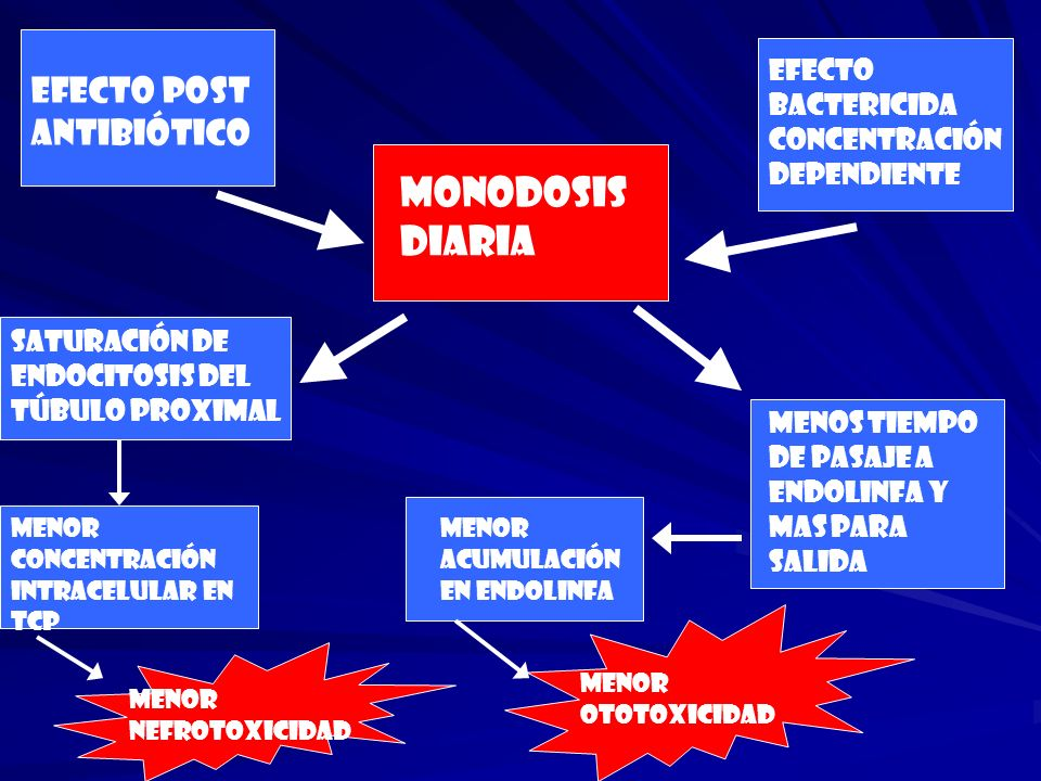 MONODOSIS DIARIA Efecto bactericida concentración dependiente Efecto post antibiótico Saturación de endocitosis del túbulo proximal Menos tiempo de pa