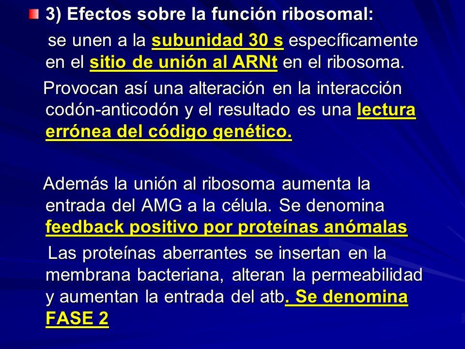 3) Efectos sobre la función ribosomal: se unen a la subunidad 30 s específicamente en el sitio de unión al ARNt en el ribosoma. se unen a la subunidad