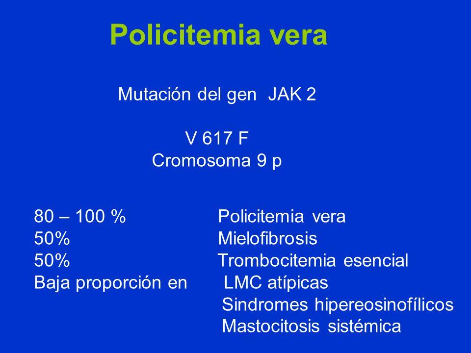 Policitemia vera Mutación del gen JAK 2 V 617 F Cromosoma 9 p 80 – 100 % Policitemia vera 50% Mielofibrosis 50% Trombocitemia esencial Baja proporción