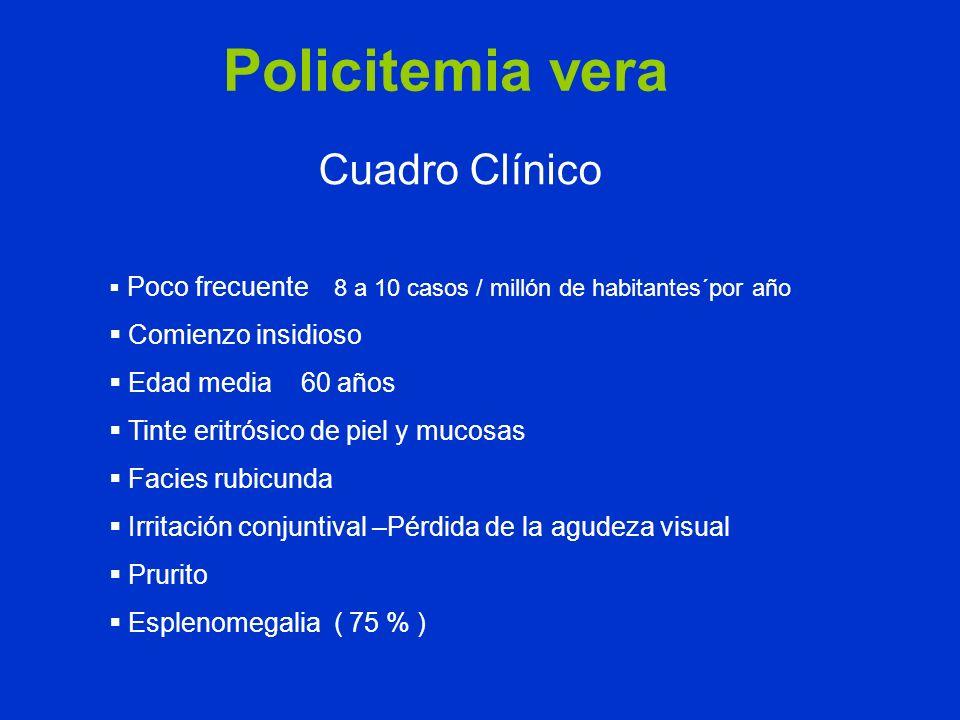 Policitemia vera Cuadro Clínico Poco frecuente 8 a 10 casos / millón de habitantes´por año Comienzo insidioso Edad media 60 años Tinte eritrósico de p