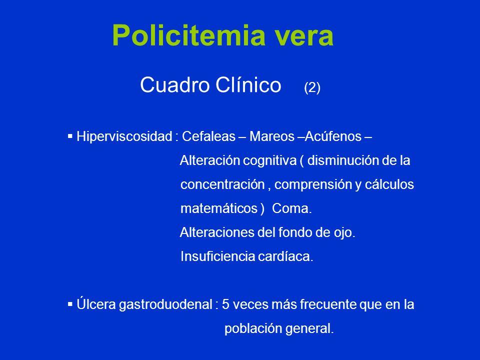 Policitemia vera Cuadro Clínico (2) Hiperviscosidad : Cefaleas – Mareos –Acúfenos – Alteración cognitiva ( disminución de la concentración, comprensió